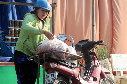 Một người thu gom vải cá với giá 4.000 - 5.000 đồng mỗi kg. Ảnh: Cửu Long