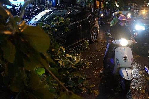 Cành cây gẫy tại đường Hoàng Quốc Việt. Ảnh: Gia Chính
