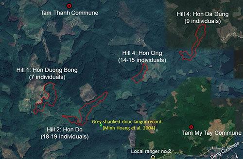 Vị trí bốn ngọn núi ở xã Tam Mỹ Tây có voọc chà vá chân xám sinh sống. Ảnh: Google maps.