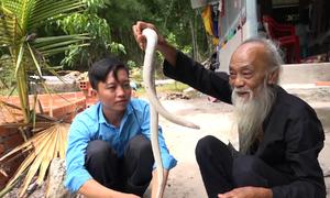 Lão nông nuôi 'bạch xà' làm thú cưng ở An Giang