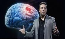 Elon Musk giới thiệu con chip có thể hợp nhất não người và AI