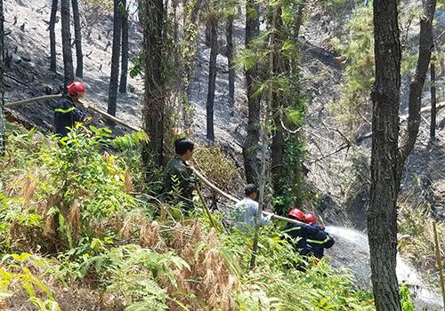 Cảnh sát đưa vòi nước lên núi để chữa cháy. Ảnh: Võ Thạnh