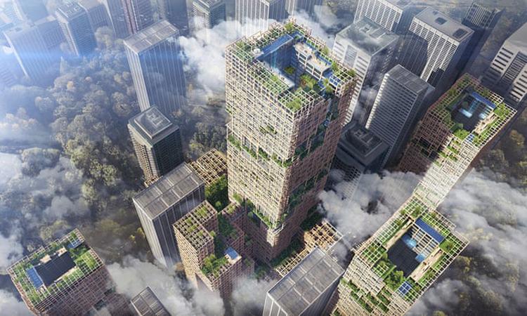 Vật liệu mới từ gỗ có thể xây dựng nhà chọc trời