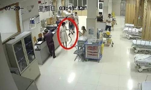 Cô gái tóm cổ thủ phạm đến bệnh viện.