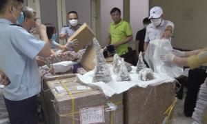 Hơn 120 kg sừng tê giác giấu trong khối thạch cao đưa về Hà Nội