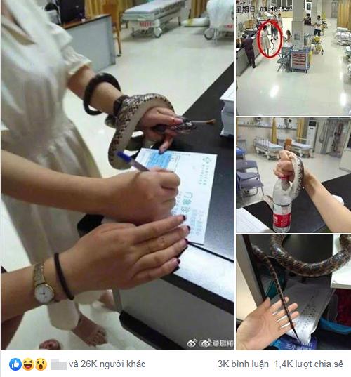 Chia sẻ của cô gái Trung Quốc nhận được hàng chục nghìn lượt thích.