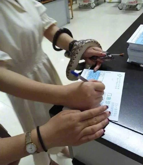 Dù viết hồ sơ khám bệnh nhưng cô gái vẫn cầm hung thủ trên tay.