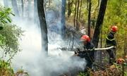 Rừng thông ở Huế bốc cháy do người dân đốt vàng mã