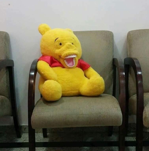 ... hàng nhận về lại là một con gấu kì lạ.