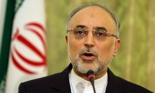 Người đứng đầu AEOI, Ali Akbar Salehi. Ảnh: AFP.
