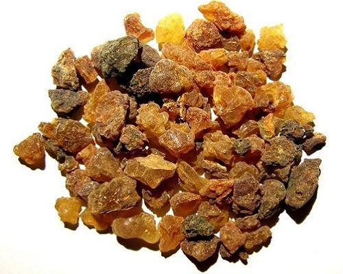 Mộc dược, thành phần có trong cả hai loại nước hoa Mendesian và Metopian. Ảnh: Atlas Obscura.
