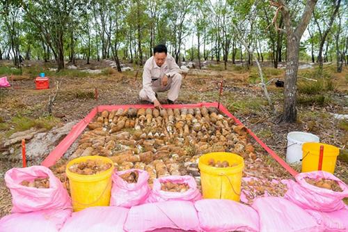 Hơn 1.000 vật liệu nổ được phát hiện ở hầm đạn thứ hai. Ảnh: Dự án MAG cung cấp