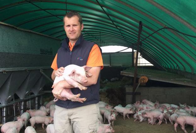Torben Soerensen tại một trang trại lợn. Ảnh: ABC Rural.