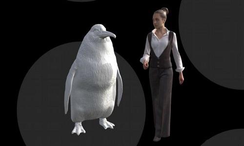 Chim cánh cụt Crossvallia waiparensis cao bằng một phụ nữ trưởng thành. Ảnh: Live Science.