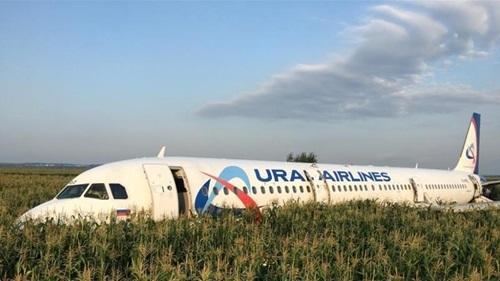 Chiếc Airbus A320 tại cánh đồng ngô ở ngoại ô Moskva. Ảnh: AFP.