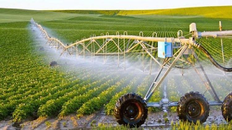 Mô hình nông nghiệp công nghệ cao.