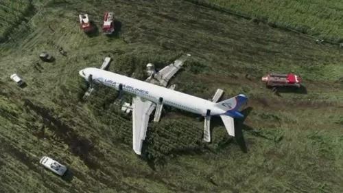 Chiếc A321 nằm trên đồng ngô gần Moskva sau cú hạ cánh bằng bụng hôm 15/8. Ảnh: Reuters.