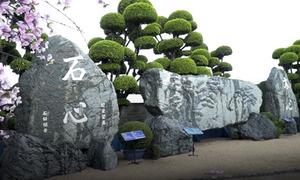 Đá nham thạch nặng 170 tấn trong công viên ở Sài Gòn