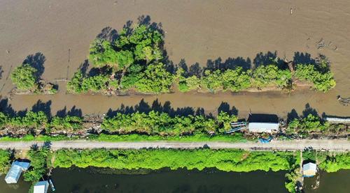 Sóng biển nuốt chuẩn hàng nghìn m2 đất rừng ven biển Cà Mau trong 11 năm qua. Ảnh: Thanh Minh.
