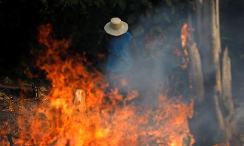 Một người đàn ôngđang cố dập cháy trong rừng Amazon ở Iranduba, bang Amazonas, Brazil hôm 20/8. Ảnh: Reuters.