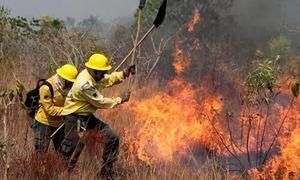 Brazil điều 44.000 binh sĩ dập cháy rừng kỷ lục ở Amazon