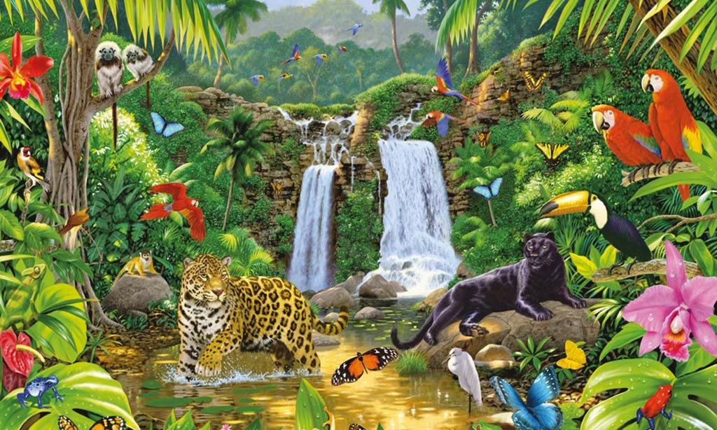 Tầm quan trọng của rừng mưa Amazon