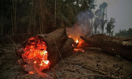 Quang cảnh cháy rừng ở Abuna, bang Rondonia, Brazil, hôm 24/8. Ảnh: AFP.