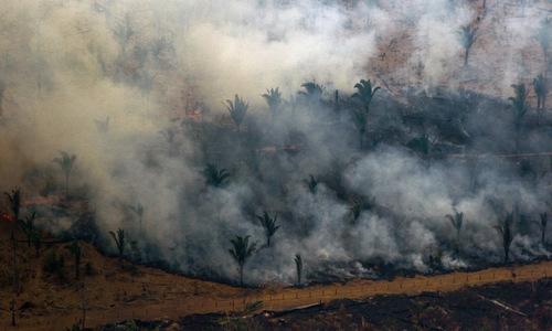 Một khu vực bị lửa thiêu rụi tại rừng Amazon trên lãnh thổ Brazil hôm 24/8. Ảnh: AFP.