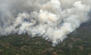 Thảm họa cháy rừng Amazon