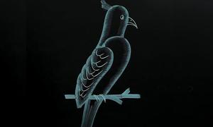 Cách vẽ con vật trên bảng đen