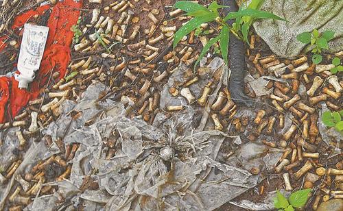 Các mẩu xương người được tìm thấy ở bãi rác bang Sinaloa, tây bắc Mexico hôm 24/8. Ảnh: El Universal.