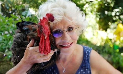Corinne Fesseau và gà trống Maurice tại thị trấn Saint-Pierre-dOleron, Pháp, ngày 31/8.Ảnh: Reuters.