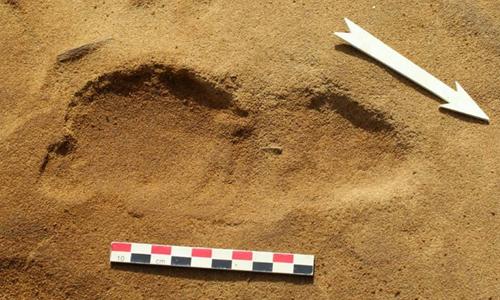 Dấu chân người Neanderthal dưới lớp cát dày ở gần bờ biển Pháp. Ảnh: Telegraph.
