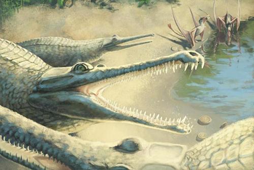 Đồ họa mô phỏng loài Mystriosaurus laurillardi. Ảnh: UPI.