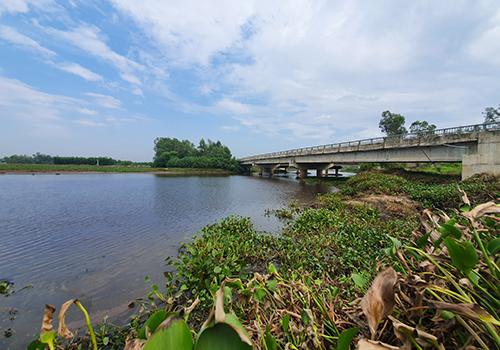 Sông Già đoạn chảy qua huyện Thạch Hà, sáng 16/9 nước vẫn đỏ, hai bên bờ váng đục và bèo tây dạt vào. Ảnh: Đức Hùng