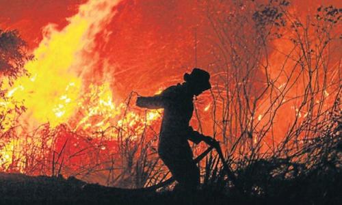 Lính cứu hỏa đang cố găng dập đám cháy ở tỉnh Nam Nam Sumatra, Indonesia ngày 13/9. Ảnh: AFP.