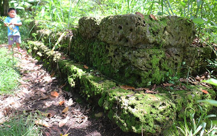 Những phiến đá nghìn năm tuổi bị rêu, cỏ bao phủ. Ảnh: Hoàng Nam