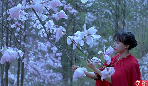 Li Ziqi trong video vào rừng hái hoa mộc lan. Ảnh: YouTube/Li Ziqi