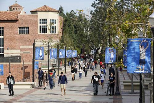 Trường đại học California ở Los Angeles (UCLA), Mỹ. Ảnh: AP