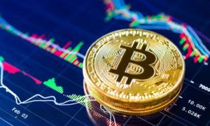 Tạo khung thử nghiệm chính sách cho công nghệ blockchain