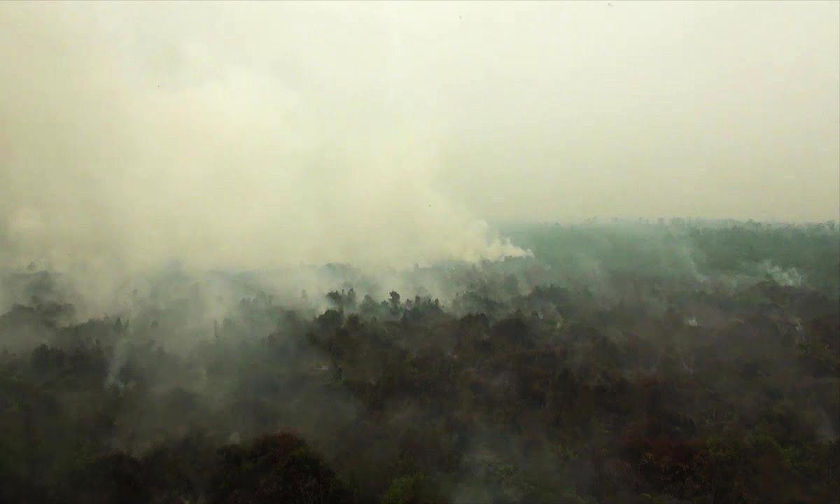 Khói cháy rừng bao phủ bầu trời Indonesia