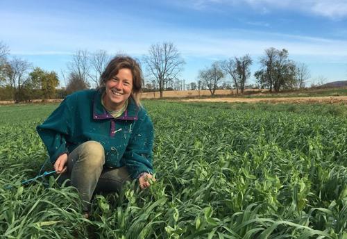 Trải nghiệm làm nông dân của nữ sinh Mỹ