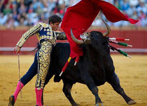 Lễ hội đấu bò tótở Tây Ban Nha. Ảnh: The Disassociated Press
