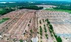 Mua đất Alibaba nhanh hơn mua bó rau muống