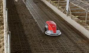 Robot tự động dọn sàn chuồng gia súc