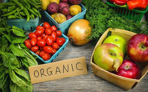 Các sản phẩm nông nghiệp hữu cơ sẽ có tem truy xuất nguồn gốc. Ảnh: ST