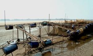 Sông Đà cạn trơ đáy