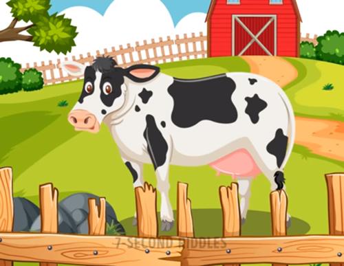 Năm câu đố thử thách hiểu biết về động vật