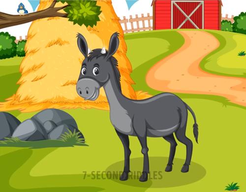 Năm câu đố thử thách hiểu biết về động vật - 4