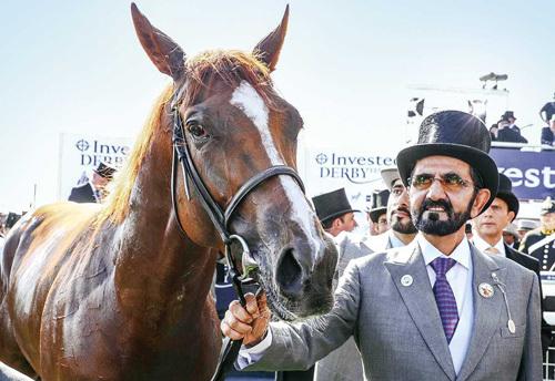 Thủ tướng UAEkiêm tiểu vương Dubai Mohammed bin Rashid Al Maktoum bên Masar, chú ngựa giành chiến thắng trong một cuộc đua năm 2016. Ảnh: ArabianBusiness.